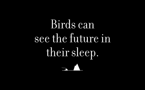 Birds can see the future in their sleep.
