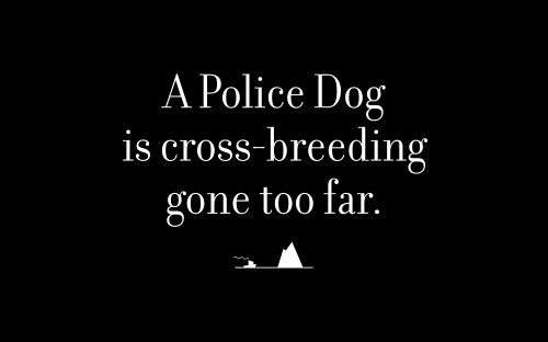 A Police Dog is cross-breeding gone too far.