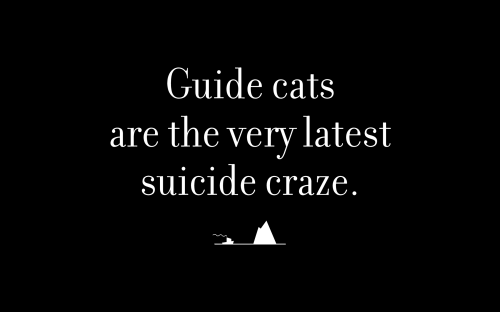 Guide cats are the very latest suicide craze.
